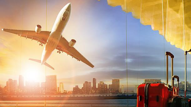 关于在一定期限内适当限制特定严重失信人乘坐民用航空器推动社会信用体系建设的意见